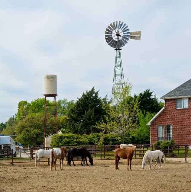 Windmill Stables
